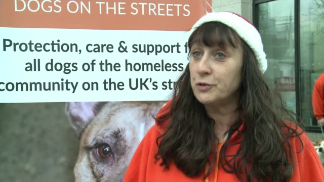 dogs on the streets throw christmas party for the dogs of homeless people england london charing cross ext michelle clark interview sot - charing cross stock videos and b-roll footage