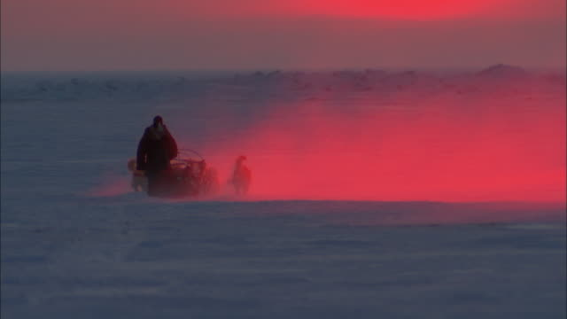 Dogs pull a man on a sled over the Alaskan tundra at sunset.