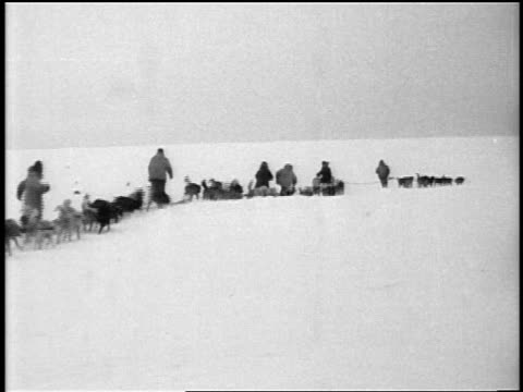 dogsled crew pulling part of airplane for antarctic expedition / documentary - anno 1928 video stock e b–roll