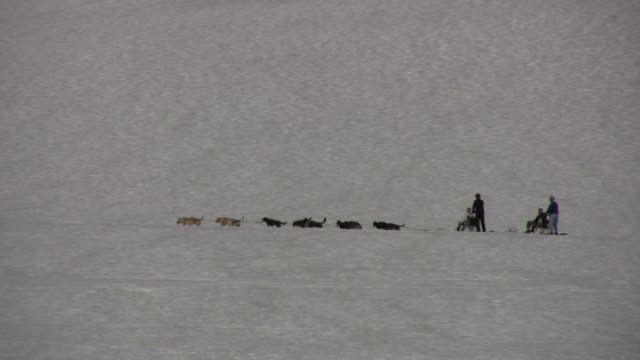 Dogsledders in the Distance