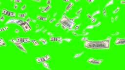 Dollars falling on green screen background