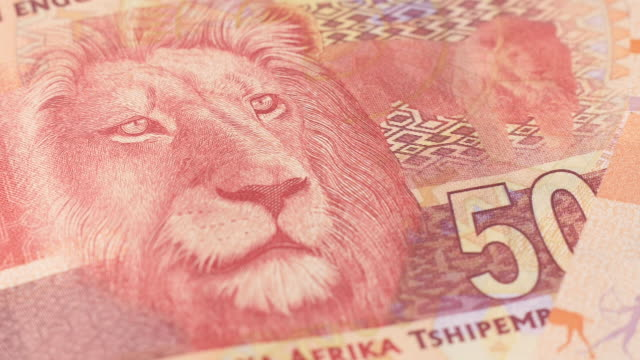 dolly across south african currency - banknote stock videos & royalty-free footage