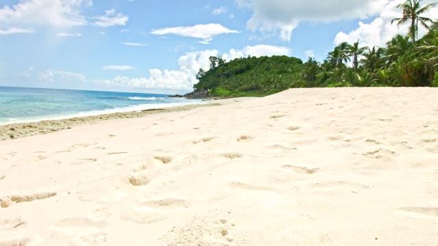 vídeos de stock e filmes b-roll de dolly: anse bazarca, mahé island, seychelles - coco