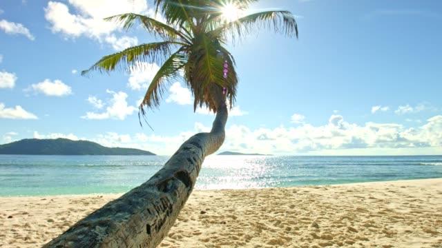 Dolly: Mooi strand van Anse Fourmis
