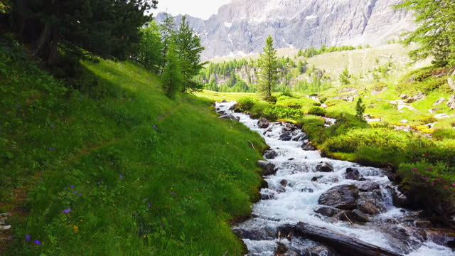 dolly: beautiful creek in the french alps - dolly shot stock videos & royalty-free footage