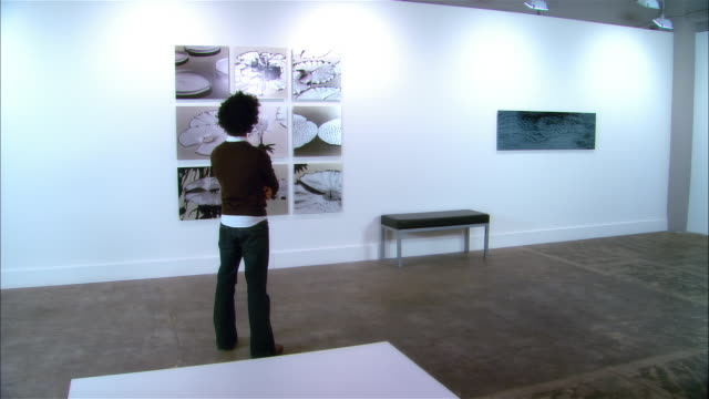 dolly behind young man looking at panels of lily pads at exhibition of contemporary art - 美術館点の映像素材/bロール