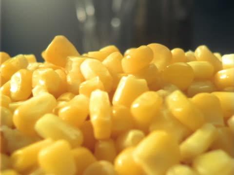 dolly 、湯気トウモロコシます。recorrido sobre maiz ティエルノ humeante - 野菜 とうもろこし点の映像素材/bロール