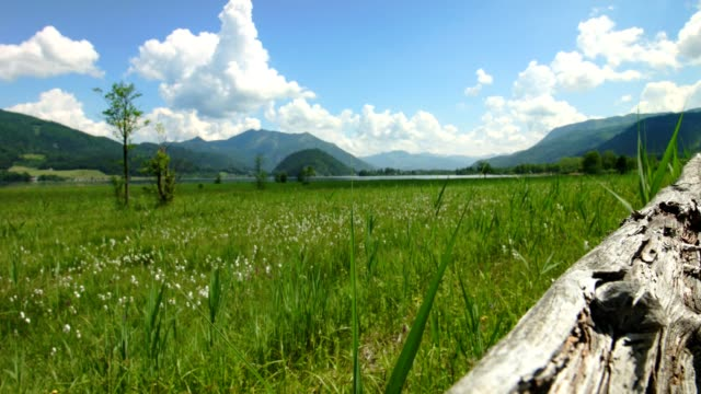 dolly: old wooden handrail at path around wolfgangsee, austria - salzkammergut stock videos and b-roll footage