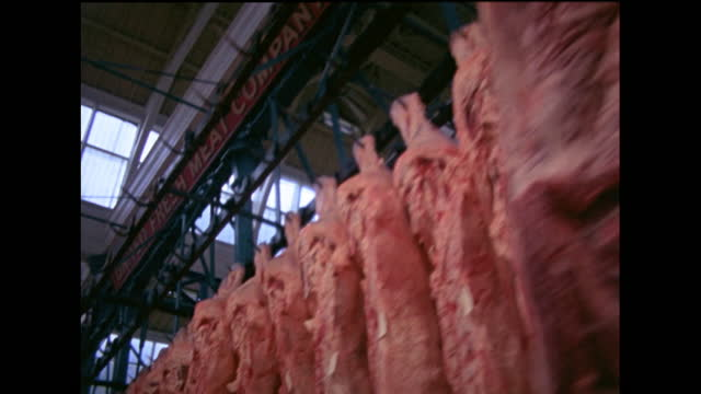 vidéos et rushes de dolly past sides of meat hanging on hooks in smithfield market; 1978 - à profusion