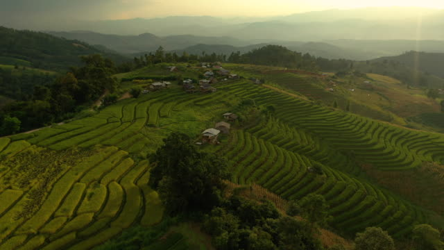 dolly right aerial view of rice terrace landscape - philippines stock videos & royalty-free footage