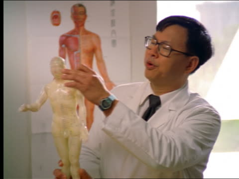dolly shot asian man in lab coat talking + holding acupuncture model - acupuncture stock videos & royalty-free footage