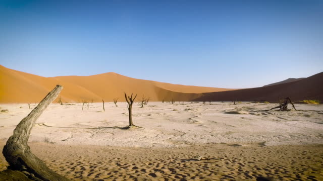 Dolly Shot at Deadvlei