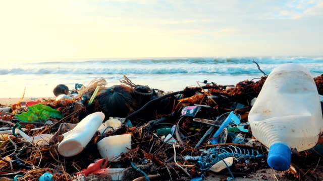 4k dolly shot: beach polluted with plastic bottles - environmental cleanup stock videos and b-roll footage