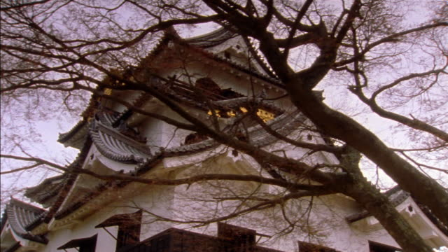 Dolly shot beneath tree branches to reveal low angle long shot of Hikone Castle / Hikone, Japan