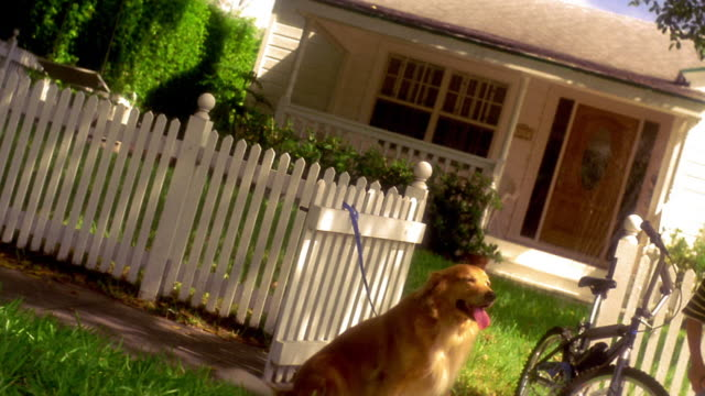 vídeos de stock, filmes e b-roll de canted dolly shot boy using bicycle pump with golden retriever sitting next to him in front of house - cerca