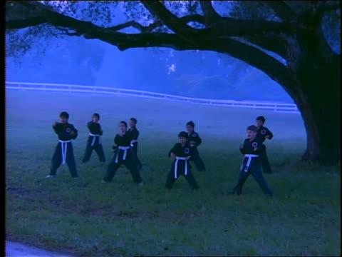 dolly shot children in uniforms practicing karate under tree in misty field at dawn - karate stock-videos und b-roll-filmmaterial