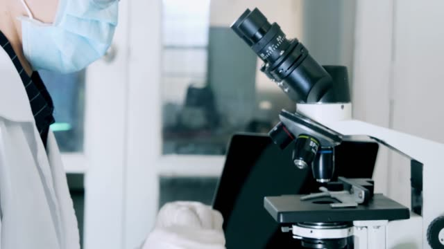 dolly shot :close-up,researcher working in lab with microscope.female biochemist analyzing bacteria sample on microscope, medicine - biochemist stock videos & royalty-free footage