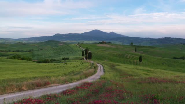 dolly shot. dirt road near pienza with hills of tuscany. pienza, san quirico d´orcia, tuscany, italy, europe. - hill stock videos & royalty-free footage