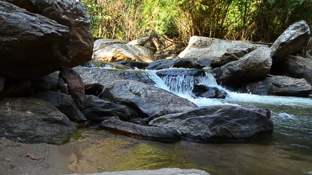 vídeos y material grabado en eventos de stock de dolly shot: agua que fluye en las cascadas - árbol tropical