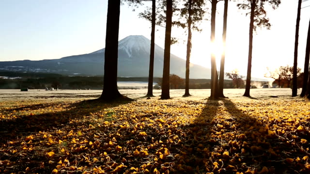 ドリー ショット: 富士山の麓パラ キャンプ日の出 - かすみ点の映像素材/bロール