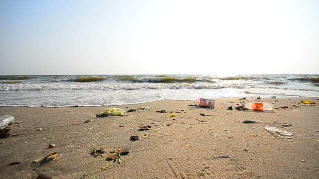 Dolly Shot: Garbage Pollutions on Dirty Beach