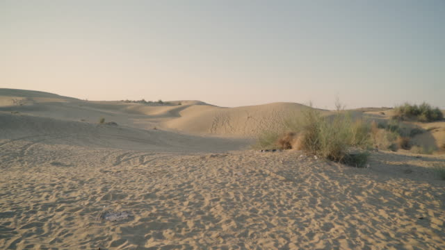dolly shot going forward through desert dunes - desert stock videos & royalty-free footage
