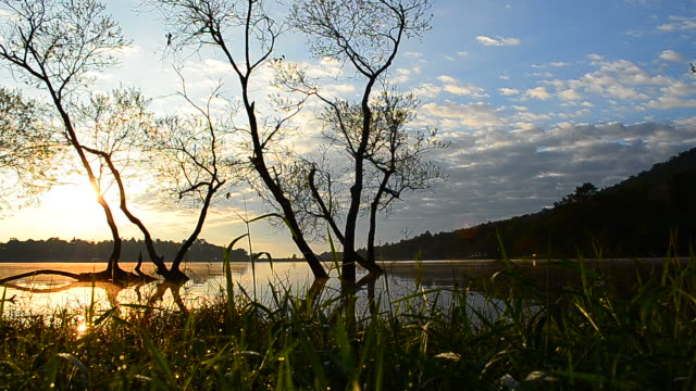 dolly shot: lake scenic landscape at sunrise - hd 25 fps stock videos & royalty-free footage