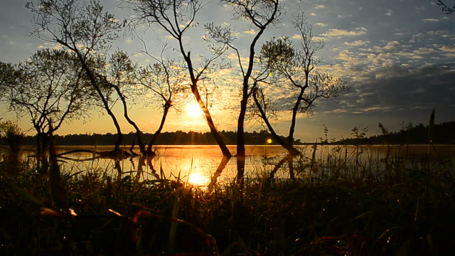 dolly shot: lake scenic landscape at sunrise - landscaped stock videos and b-roll footage