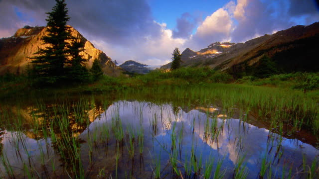 dolly shot marsh with mountains in background / time lapse with clouds reflecting in water / banff national park, canada - banff stock videos & royalty-free footage