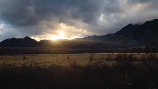 ドリーは、秋、日本で小田代ヶ原フィールドを撮影 - 茶色背景点の映像素材/bロール