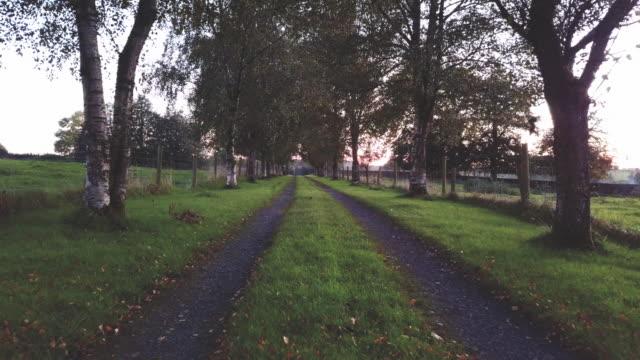 vídeos y material grabado en eventos de stock de dolly shot of a tree lined driveway to an irish farm. - poste de madera