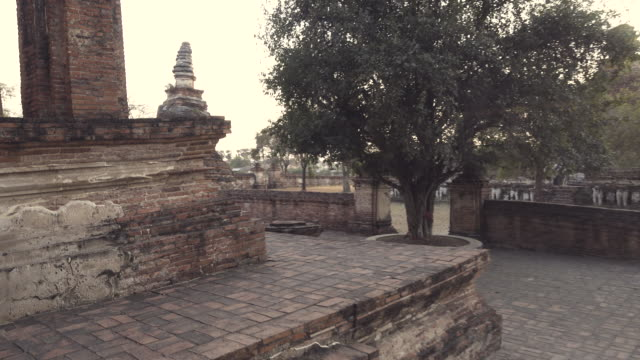 dolly shot of ancient temple at ayuthaya, thailand - realisticfilm stock videos and b-roll footage