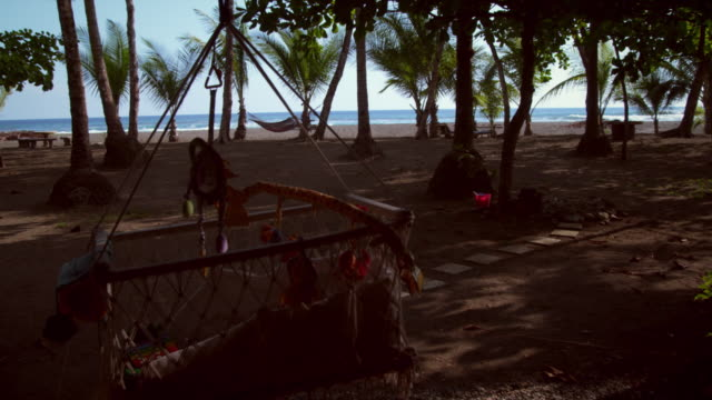 dolly shot of beach resort grounds - costa rica video stock e b–roll