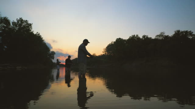 vídeos de stock, filmes e b-roll de dolly shot of family fishing in lake at forest against sky during sunset - hobbie
