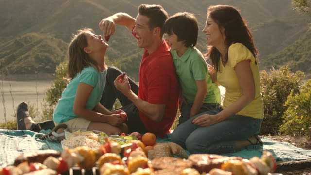 dolly shot of family having barbecue picnic by lake in countryside. - 肉点の映像素材/bロール