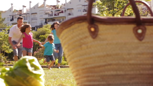 dolly shot of family in park running towards picnic basket and twirling round. - picnic basket stock videos and b-roll footage