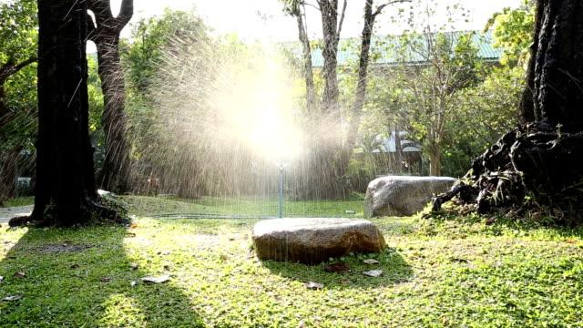 dolly schuss von gartenbewässerung sprinkler - gartenanlage stock-videos und b-roll-filmmaterial