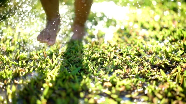 dolly shot of little boy running across the wet green field. - grass stock videos & royalty-free footage