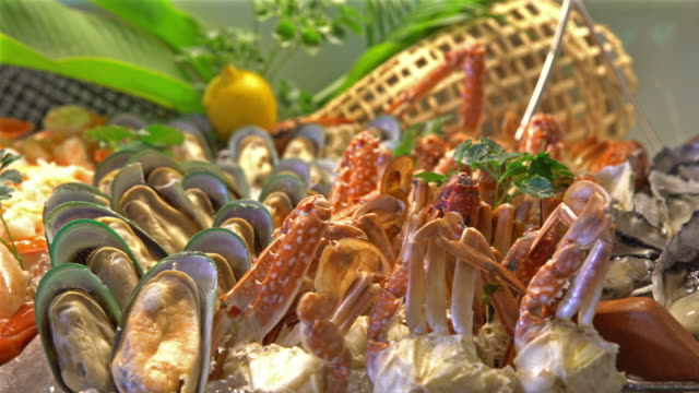 dolly shot of seafood on ice in buffet line - buffet stock videos & royalty-free footage