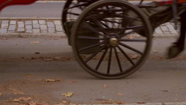Dolly shot of two horse drawn carriages passing.