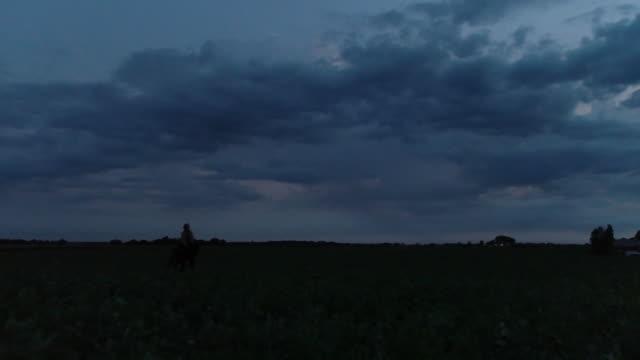 vídeos y material grabado en eventos de stock de dolly shot of woman riding horse on field during dusk - herbívoro