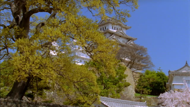 dolly shot past trees to reveal low angle long shot of himeji castle / himeji, japan - 城点の映像素材/bロール