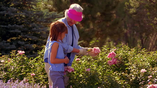 dolly shot senior woman in visor + young girl working with flowers in garden - sun visor stock videos & royalty-free footage