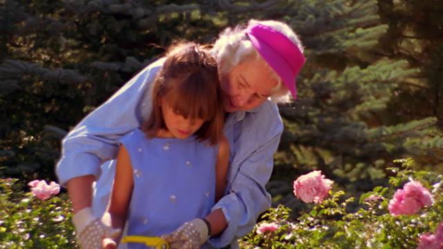 ms dolly shot senior woman teaching young girl how to use gardening shears to cut flowers in garden - trädgårdshandske bildbanksvideor och videomaterial från bakom kulisserna