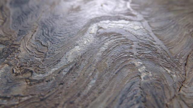 ドリー ショット: 石の壁の背景。