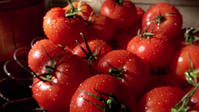 dolly shot to extreme close up of wet tomatos in metal basket - tomat bildbanksvideor och videomaterial från bakom kulisserna