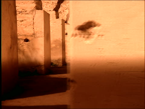 dolly shot to middle eastern man riding horse galloping toward camera in arched corridor / morocco - galoppieren stock-videos und b-roll-filmmaterial