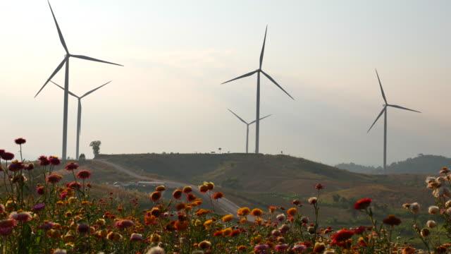 dolly sköt vindkraftverk gård vid sunset - naturkraft bildbanksvideor och videomaterial från bakom kulisserna
