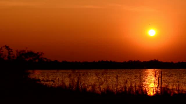 DOLLY HD: hermoso atardecer en el lago