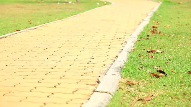 HD Dolly:brick walkway